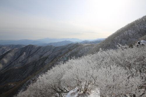설경의 황악산은 김천을 품는다.