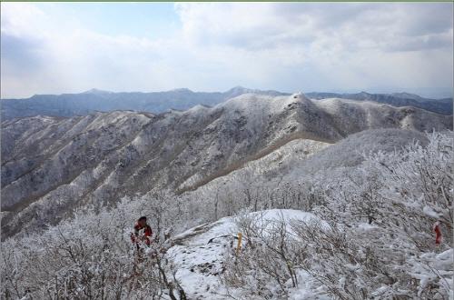 백두대간 산림휴양도시 김천시로 오세요.